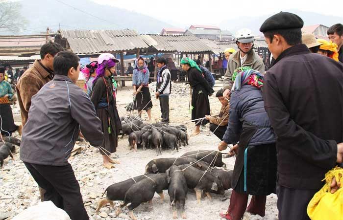 marche ethnique lao cai sin cheng