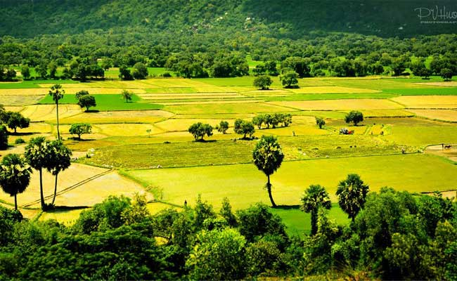 croisiere delta du mekong rizieres ta pa