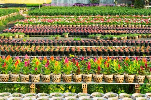 visiter delta mekong village horticole