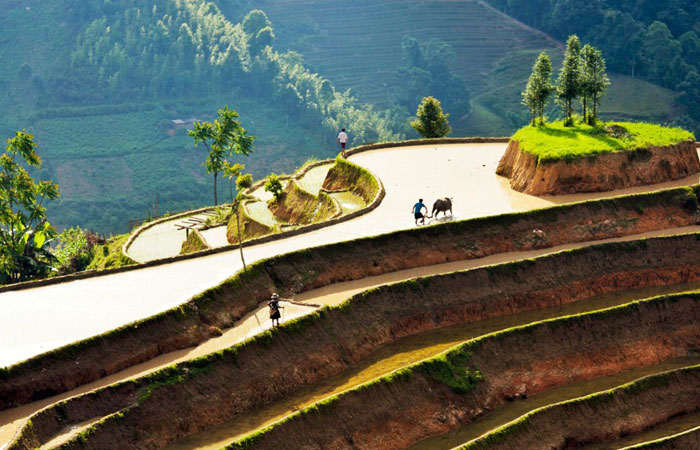 ha giang destination 4 saisons riziere terasse inondee