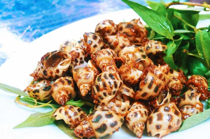 ile phu quoc delices mer escagot huong