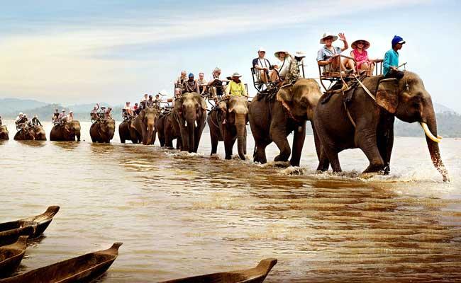 lac lak vietnam balade dos elephant