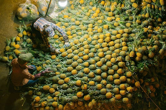 marche long bien hanoi fruits