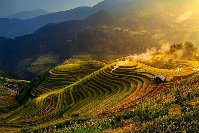 riziere terrasse mu cang chai