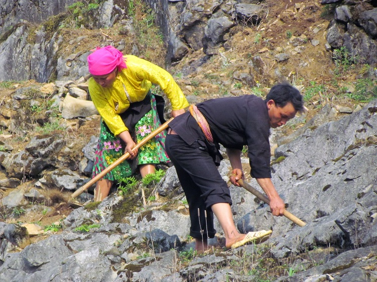 plateau dong van ha giang labour