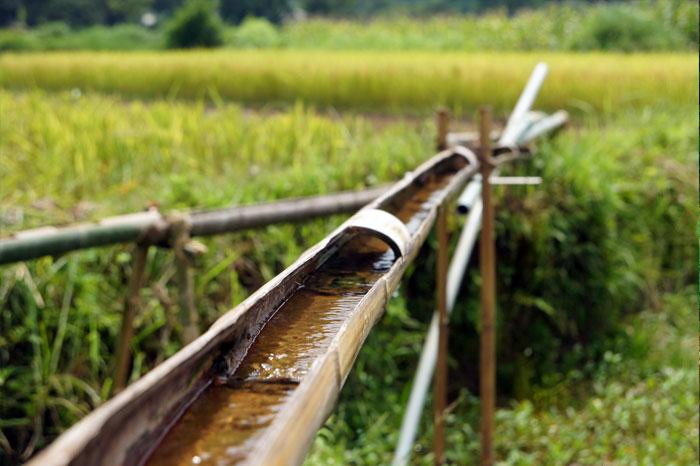 roue à eau Cao Bang tuyau