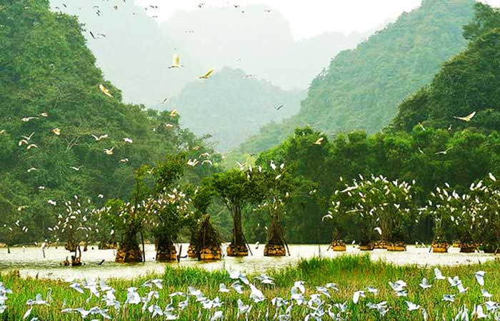 tam coc vietnam thung nham