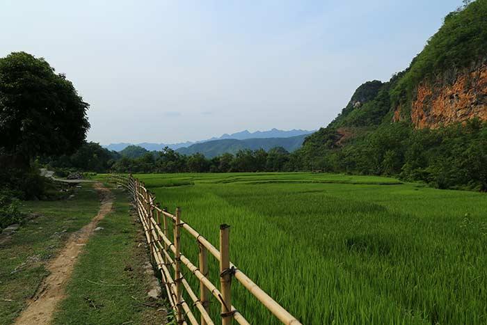 visiter mai chau en 2 ou 3 jours rizières
