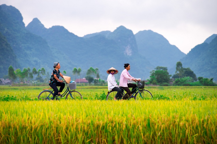 voyage au vietnam destination sure