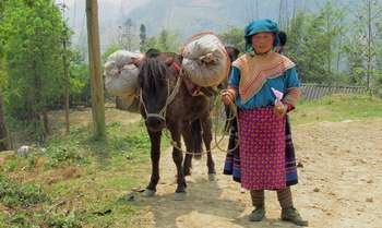 Thac Ba – Trung Do - Bac Ha